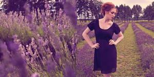 In my lavender dreams