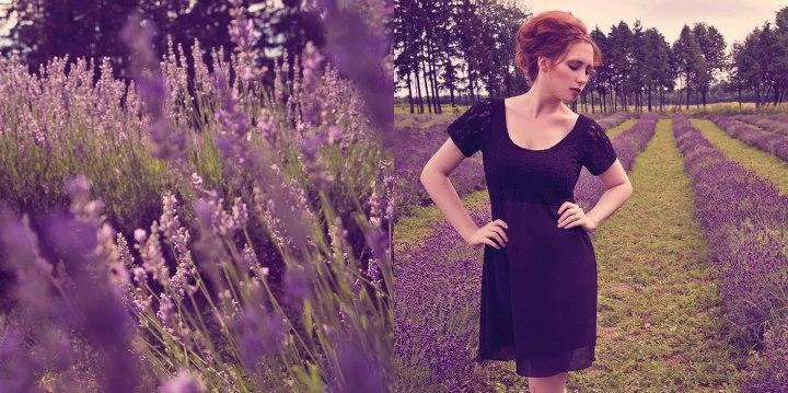In my lavender dreams by Stephanie-van-Rijn
