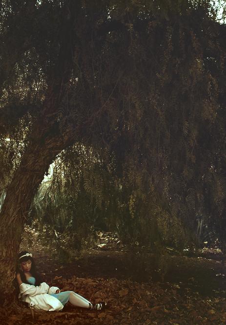 This wonderland by Xiuhtecuhtli