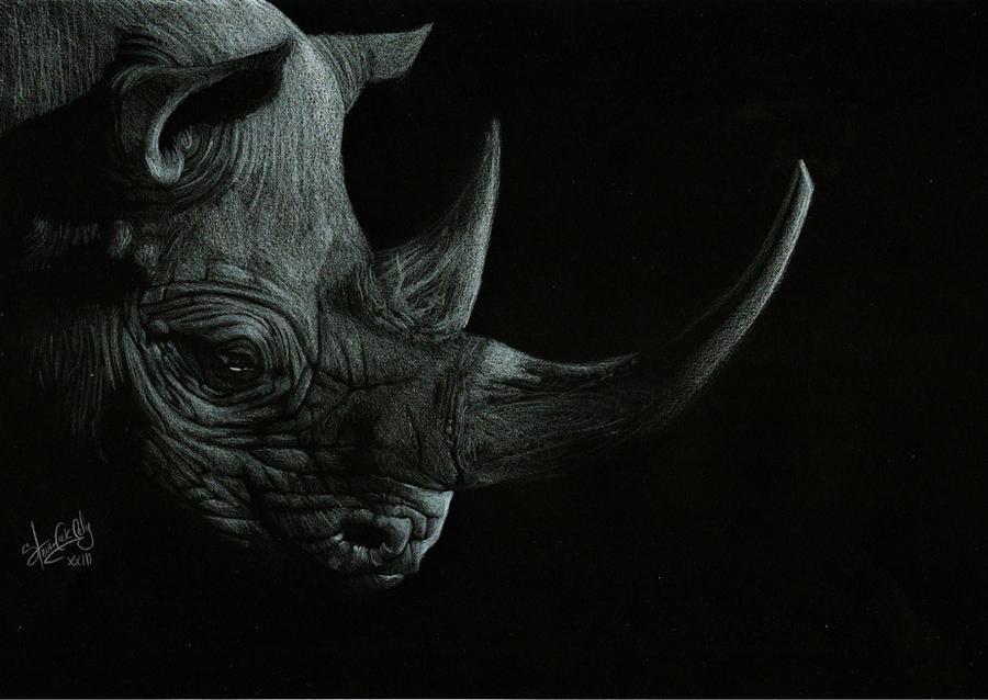 Rhinoceros by Shinigami1289