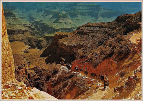 Grand Canyon Nat'l Park by haloeffect1