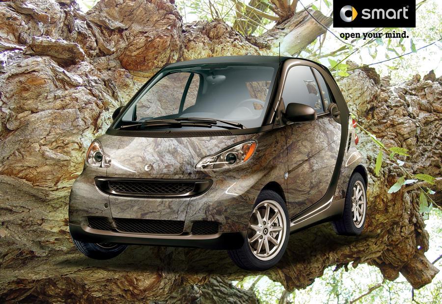 SmartCar: Burl by Biohaz-Daddy