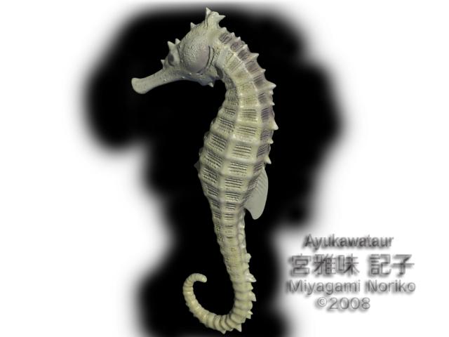 seahorse wip by Ayukawataur