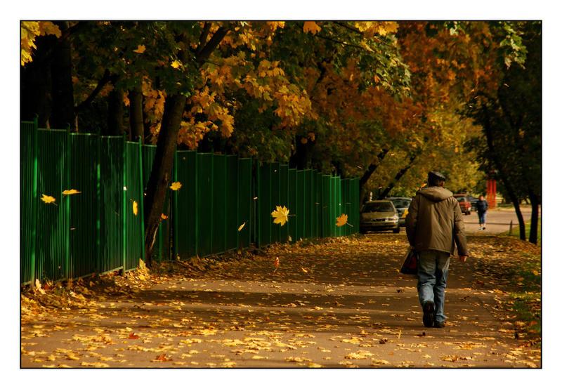man's autumn_2 by Fedorrrz