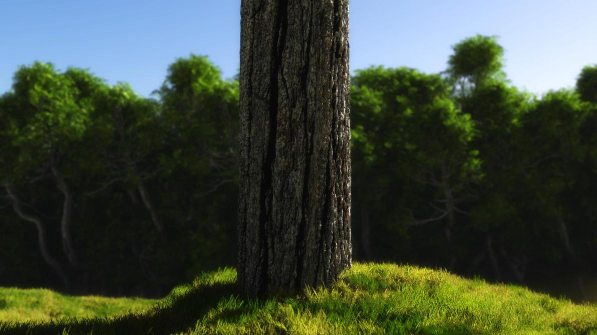 Tree trunk study by MolDesignStudio