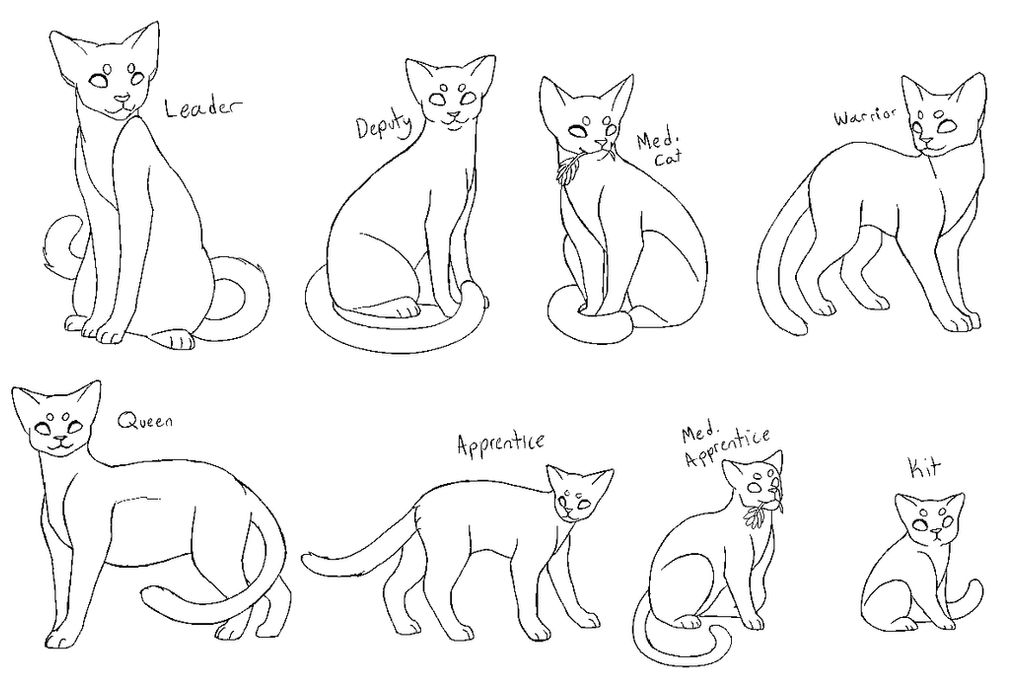 Warriors Cats Allegiance Bases F2U by musewings on DeviantArt