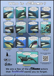 Who is Shamu? Poster