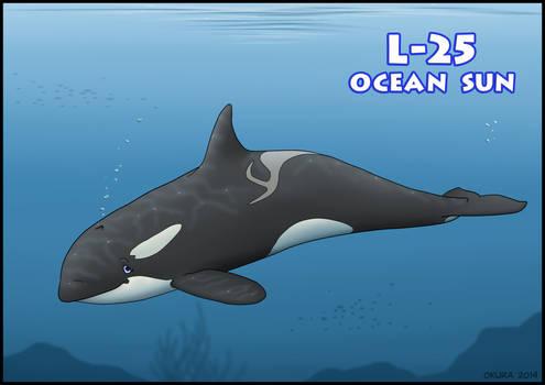 L-25 Ocean Sun