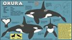 Okura Profile Sheet