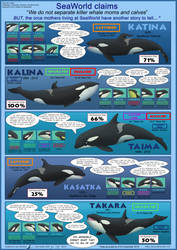 SeaWorld's Mothers and Calves
