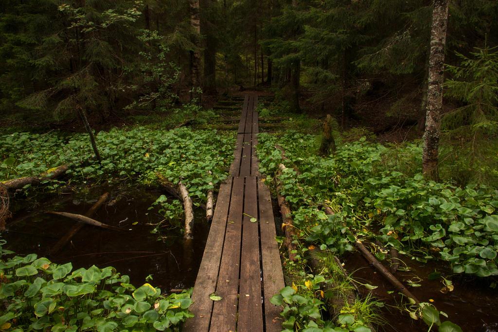 Pathway by mabuli