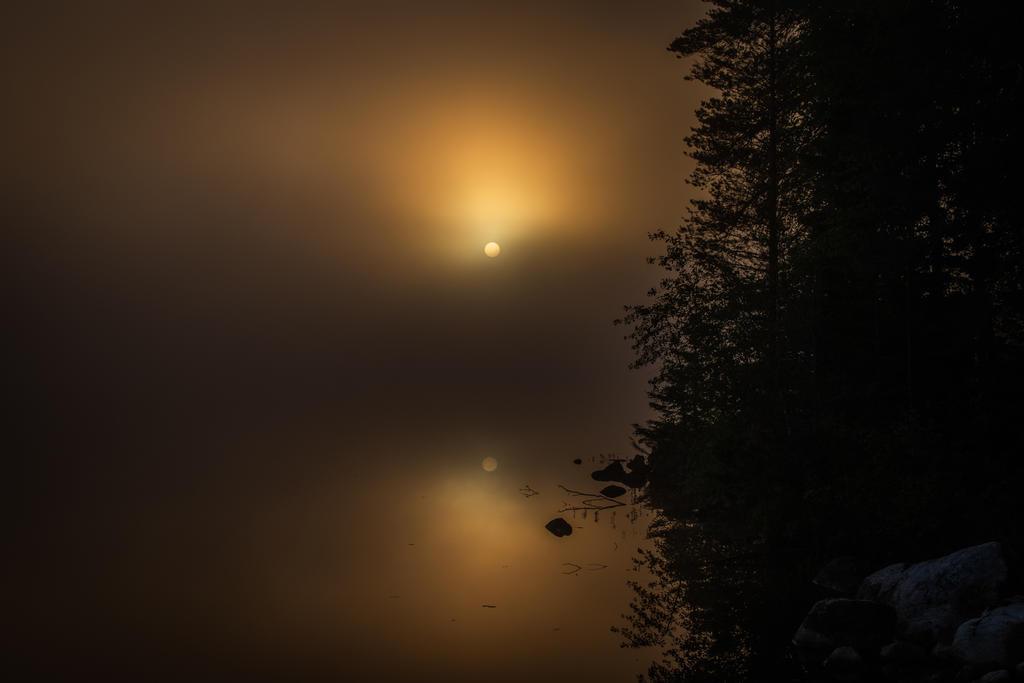Midnight sun by mabuli