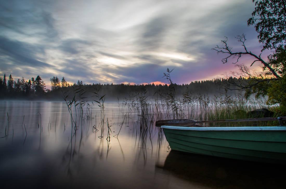 Misty daybreak II