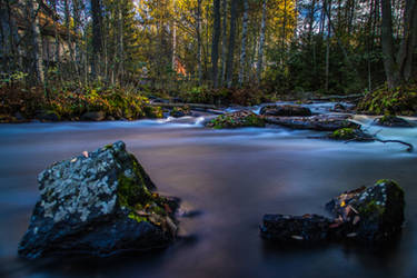 Autumn river IV