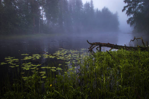 Misty river VI