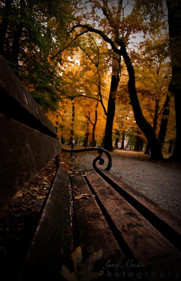 Last fall by CromarK