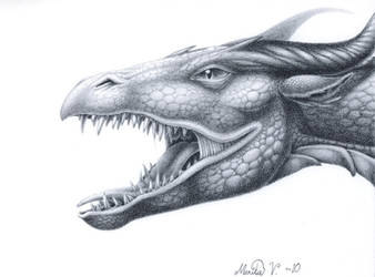 Dragon head by YikYik