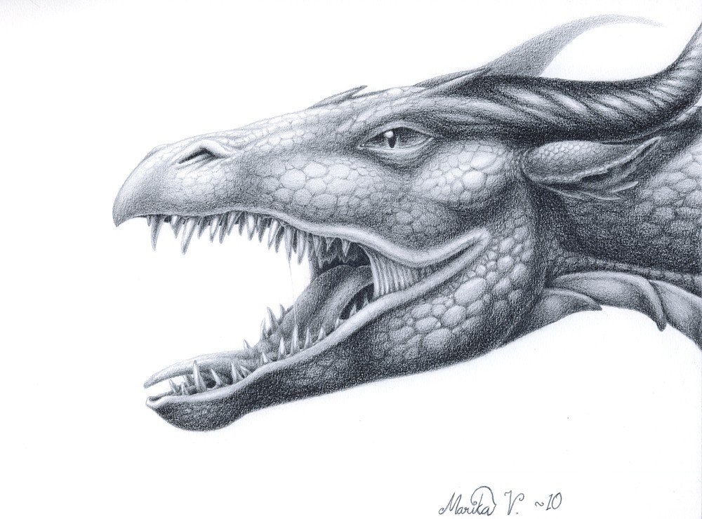 dragon head drawing in pencil wwwimgkidcom the image