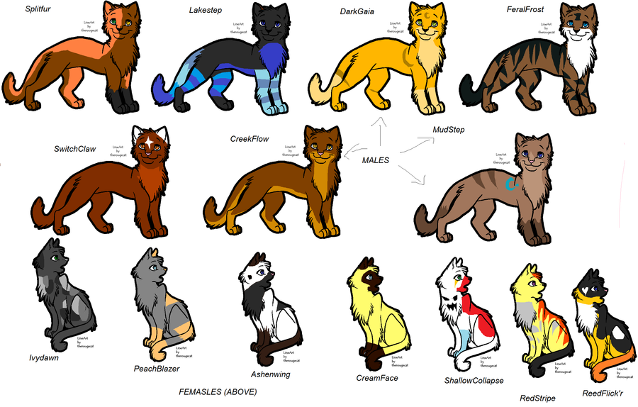 Good Names For Warrior Cat Books