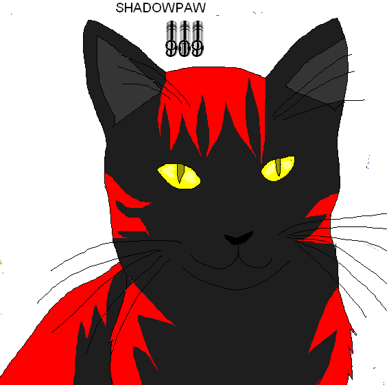 Shadowpaw909's Profile Picture