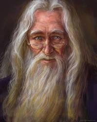 Albus Dumbledore by Duh22
