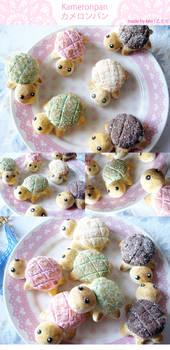 Kameronpan: Turtle Melon Bread