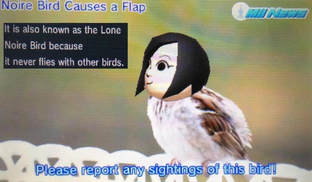 Lone Noire Bird