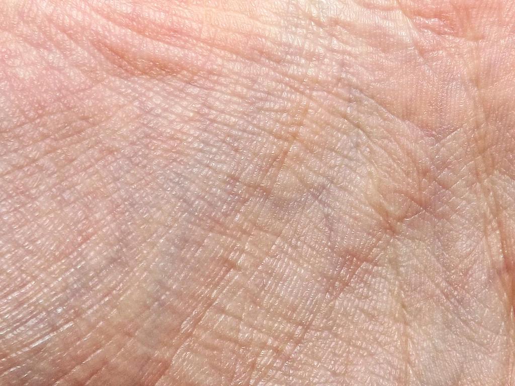 Palm skin texture by ale2xan2dra on DeviantArt