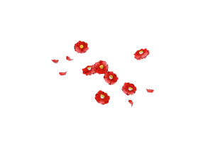 RedFlowers 1 by fania98