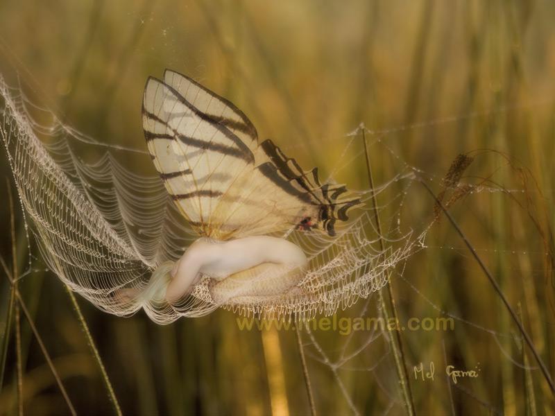SOS fairy by MelGama