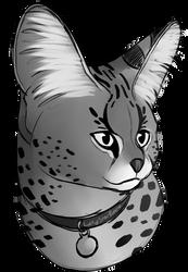 Serval Sketch