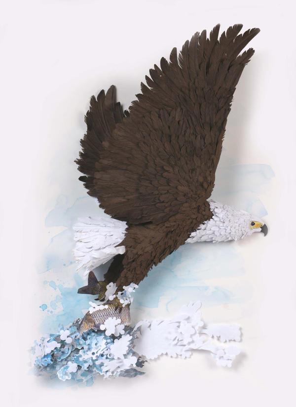 Fish Eagle by hazelB