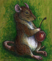 Rat with a Cherry - Pyrography