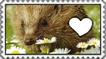 Do You Love Heggehogs Stamp by Pichu-Chan