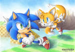 Level Sonic and Boss Tails