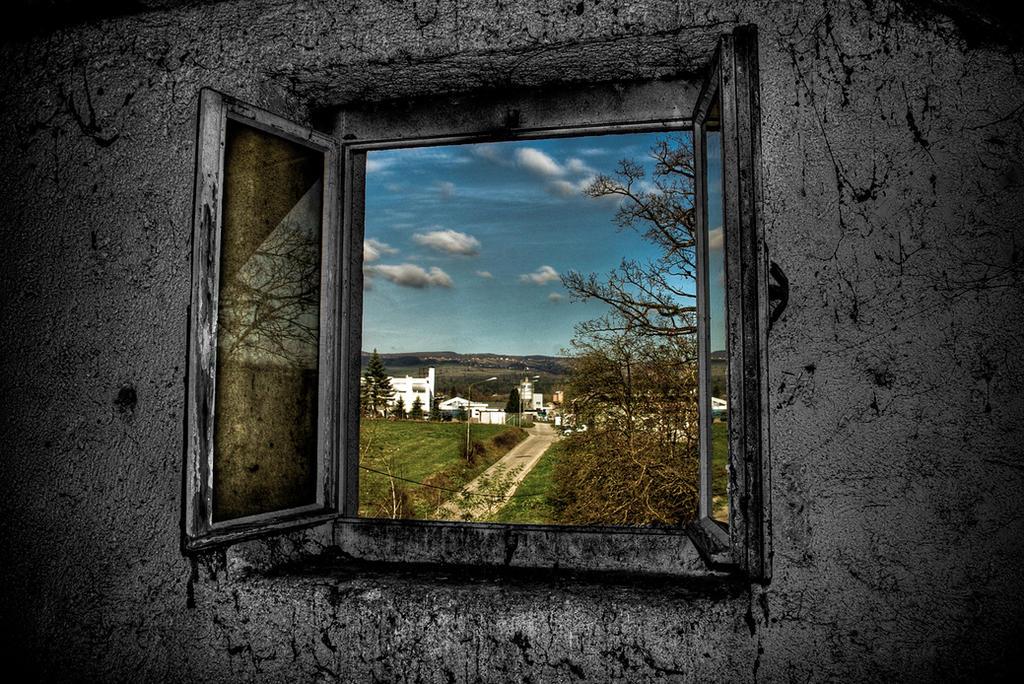 Prozori koji govore - Page 2 Window_of_Opportunity_by_d1kobraz