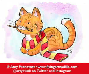 Gryffindor Kitty