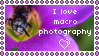 I Love Macro Photography Stamp by KoRn-sTaR60291