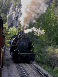 1800 Train, Black Hills SD 2