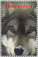 I love wolves stamp by ohhperttylights