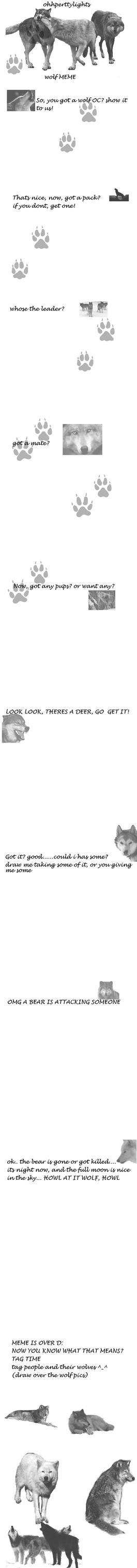 Wolf OC meme by ohhperttylights