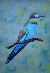 Bee-Eater by Ptero-Pterodactylus