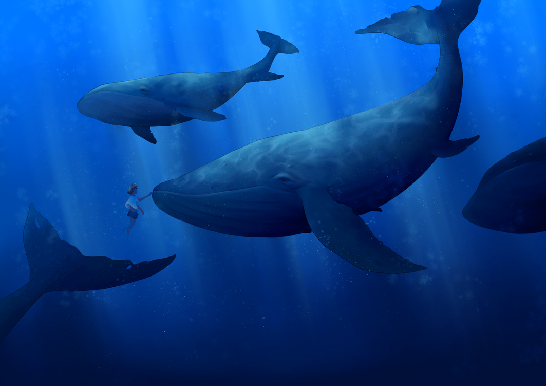 Baleas by 326Kamechan