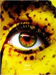 Cheetah Eye