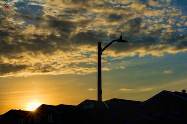 Day 346: Sunset