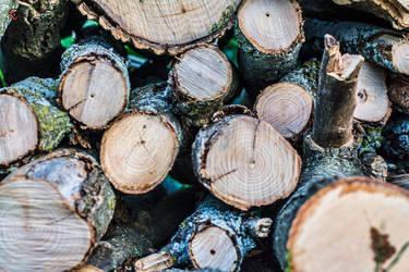 Day 347: Logging in
