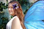 faery me