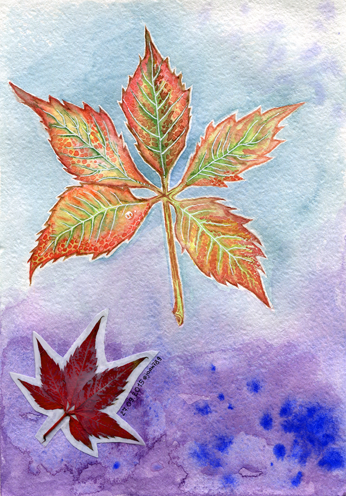 Autumn leaf by joan789