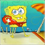 SpongeGuard