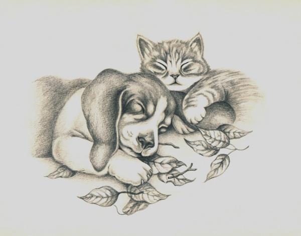 Dibujos a lapiz de gatitos tiernos , Imagui